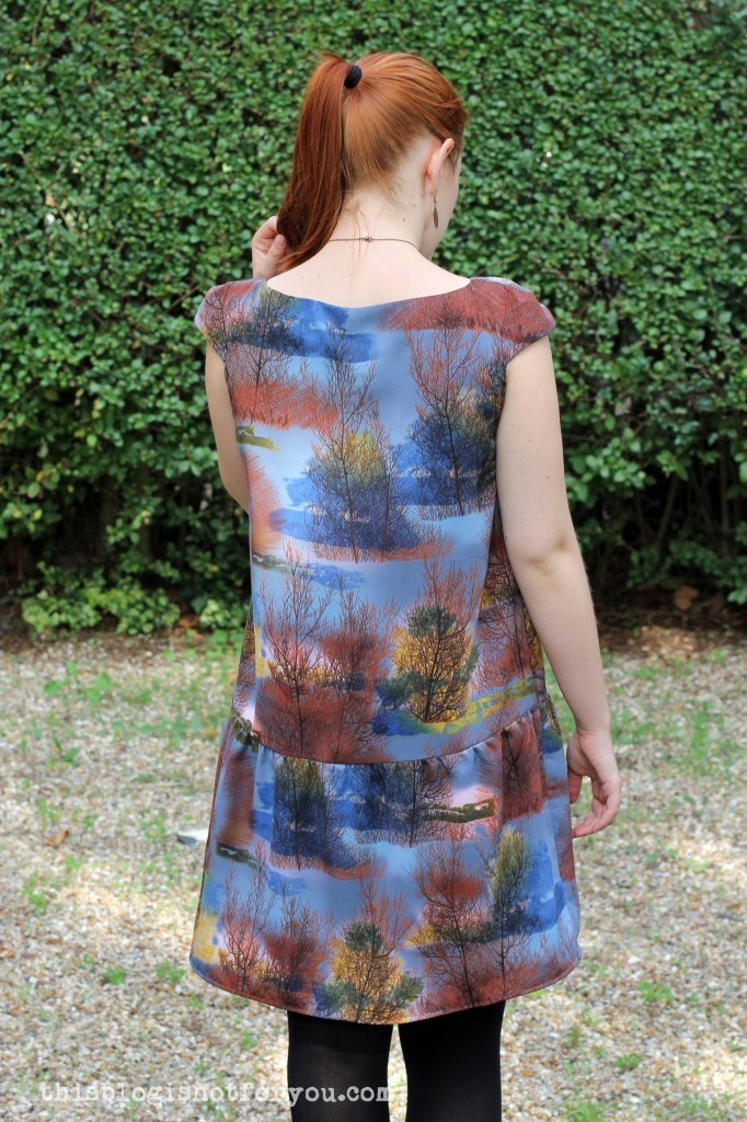 Malvarosa Dress by thisblogisnotforyou.com
