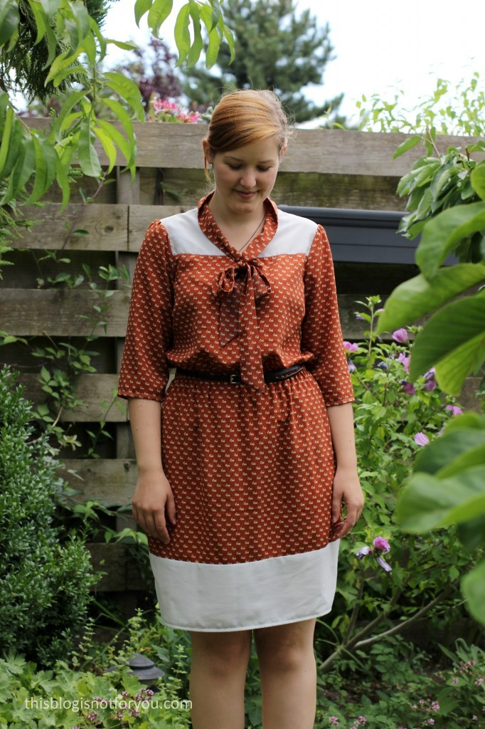 Lottie Dress by thisblogisnotforyou.com
