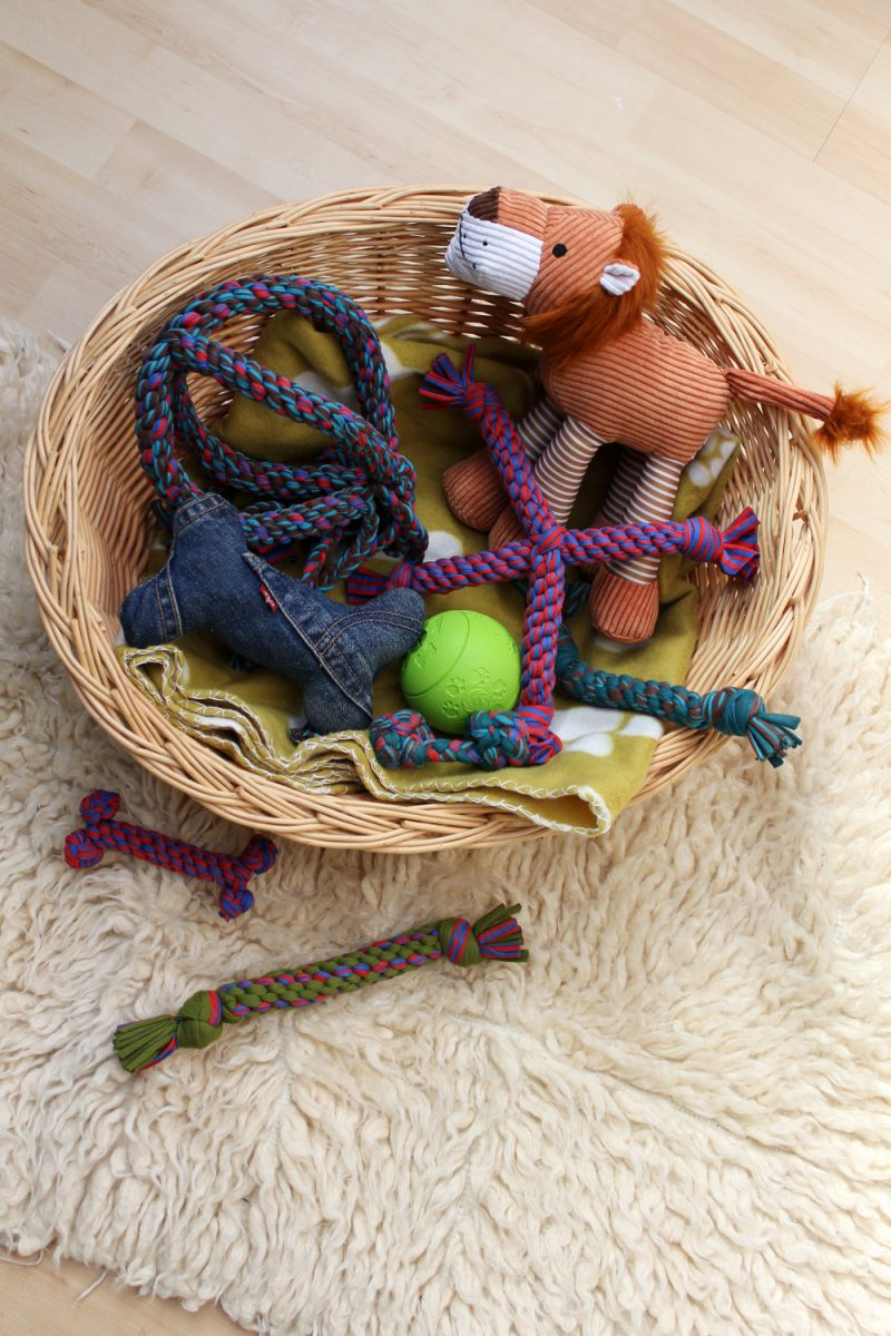 DIY Dog Toys by thisblogisnotforyou.com